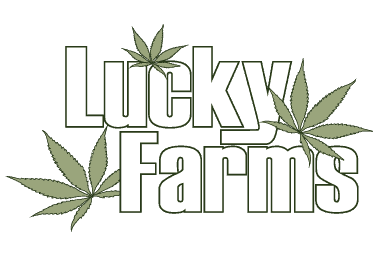 Lucky Farms